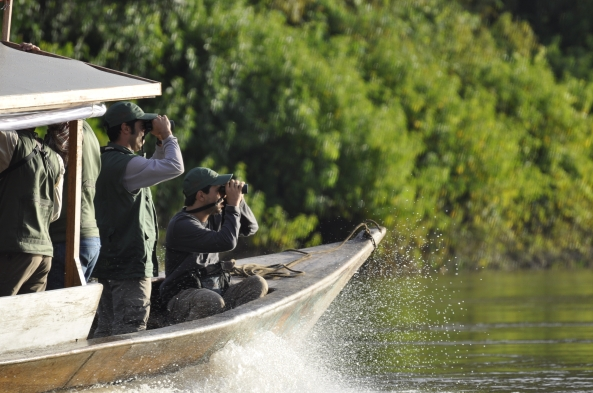 On the Amazon River: A Birding Paradise