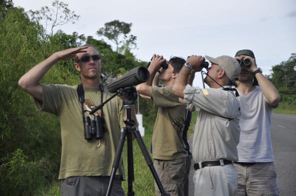 The Birding Rally Challenge