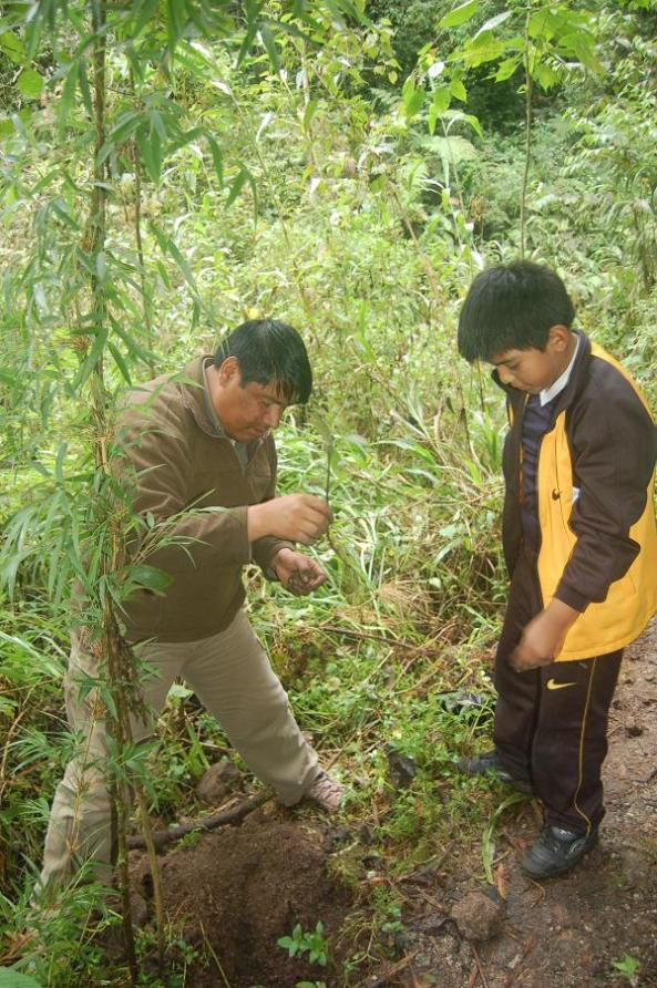 Reforestation Project at Inkaterra