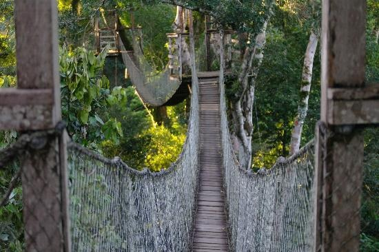 The Canopy Walkway at Inkaterra Reserva Amazonica
