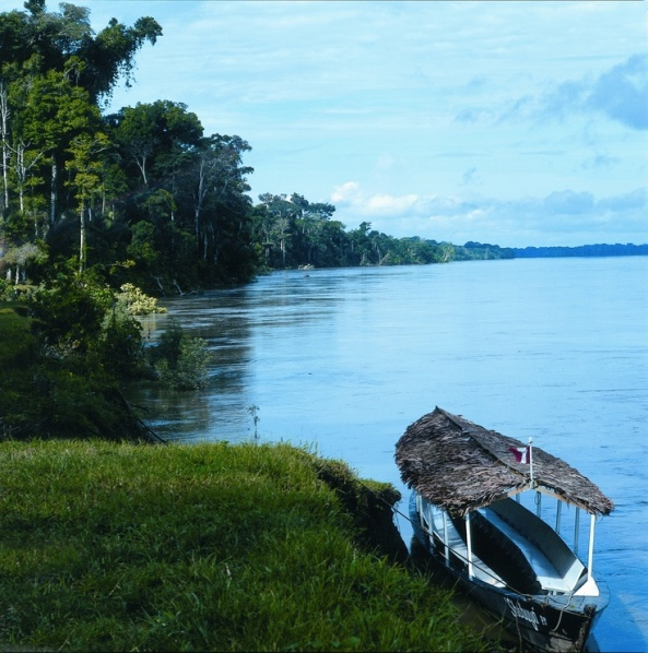 On the banks of the Madre De Dios River