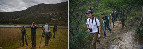 The birders in action at the BRC 2013